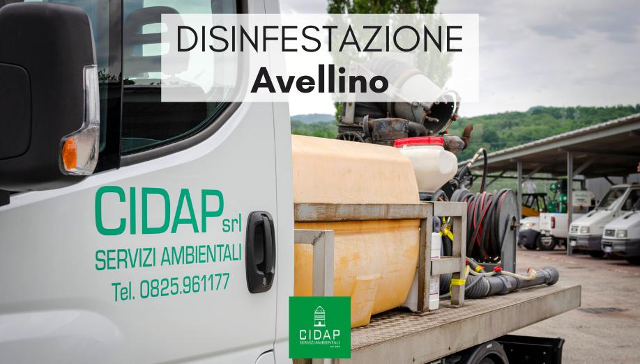 Disinfestazione Avellino Maggio 2020