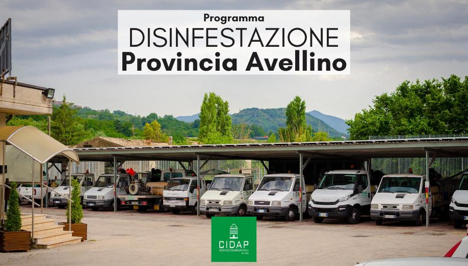 Programma disinfestazione ad azione adulticida Provincia di Avellino Giugno 2020