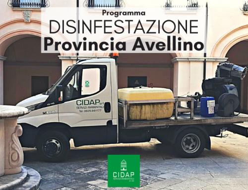 Provincia Avellino, programma di disinfestazione agosto/settembre 2021