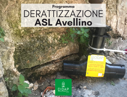 Programma derattizzazione ASL Avellino ottobre/novembre 2021