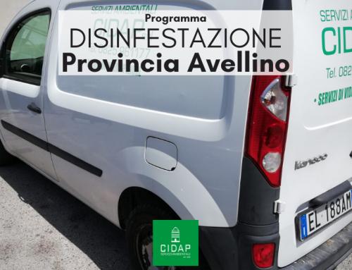 Provincia Avellino, programma di disinfestazione ottobre 2021